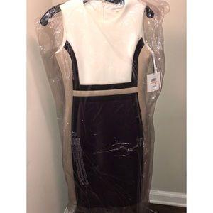 Calvin Klein scuba dress.